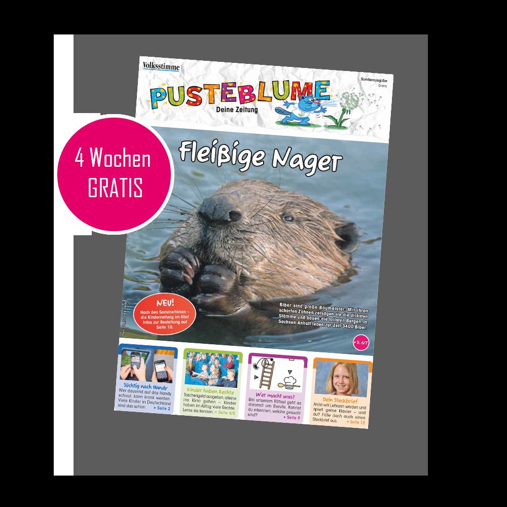 Pusteblume-Kinderzeitung